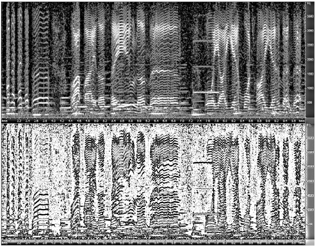 These voice prints, captured by Carnegie Mellon researchers, display examples of voice micro-features from a record of actor Jack Mercer playing the part of Popeye the Sailor in a 1935 recording. Image credit: Carnegie Mellon University School of Computer Science